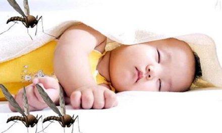 Top 5+ loại kem chống muỗi cho bé nào tốt nhất hiện nay 2020