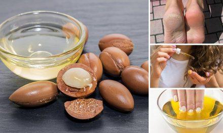 Dầu argan là gì? Công dụng của dầu Argan đối với sức khỏe và làm đẹp
